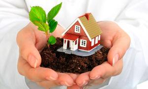 Приватизация садового участка — необходимые документы и стоимость процедуры